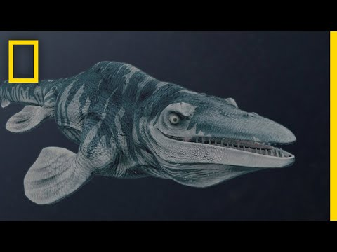 Mosasaurs 101 | National Geographic