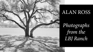 Alan Ross: Photographing Oak Trees at the LBJ Ranch