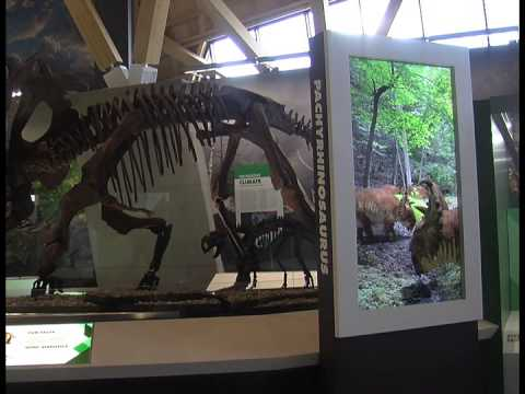 September 10th - New Dinosaur Museum Opens