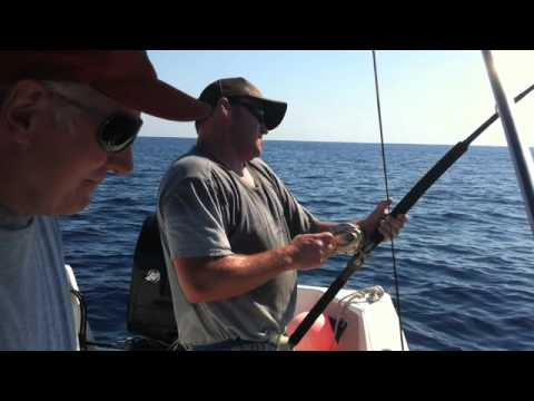 Five Stages of Fighting Big Fish: 229 Pound Yellowfin Tuna