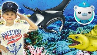 ОКТОНАВТЫ и рыбки СБАБАМ для детей - Даник и развивающие игрушки сюрпризы SBABAM