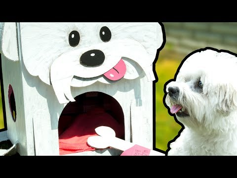 How to Make the Most Amazing Dog House | DIY Cardboard Crafts on Box Yourself