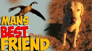 *NEW* Hunting With Retriever Dogs - theHunter 2015 PC Gameplay w/leeroy