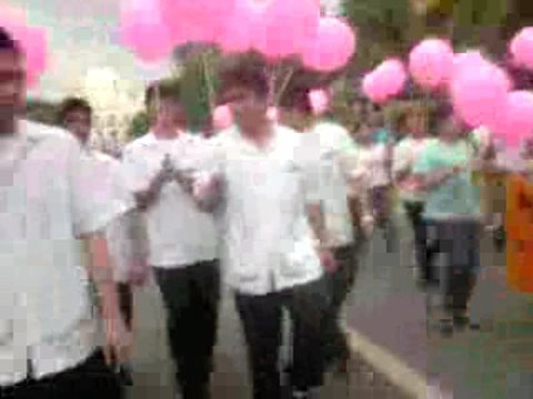 UV GULLAS BREAST CANCER  PARADE