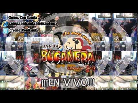 La Rana - Banda Bucanera (En Vivo)