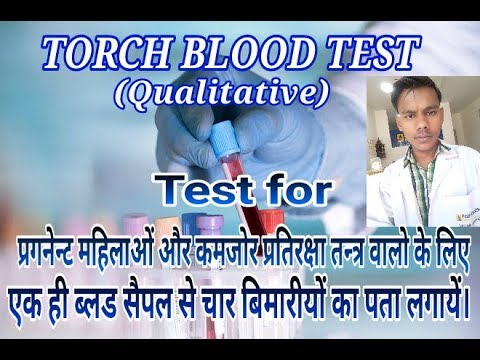 TORCH BLOOD TEST IN hindi