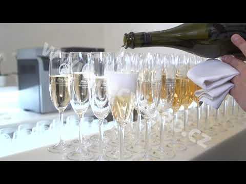ČR - obchod - víno - šampaňské - vinařství - degustace