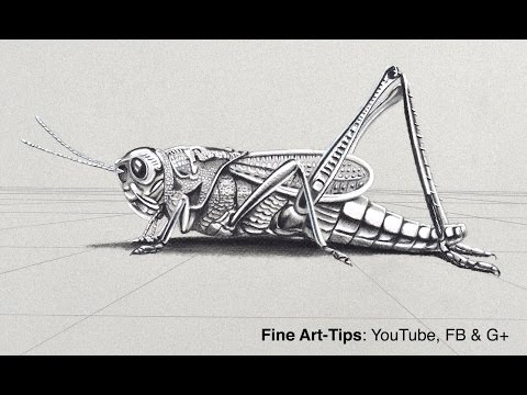 How to Draw a Metalic Grasshopper in 3D - Chrome Cricket