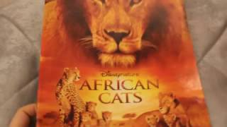 Африканские кошки AFRICAN CATS НАКЛЕЙКИ African cats Disney Nature PANINI