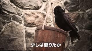 """日本でも大人気!『ハリー・ポッター』と並ぶ世界的冒険ファンタジー""""ニルスのふしぎな旅""""完全実写版! 空前のスケールとロケーションで..."""
