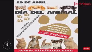#EnVivo El Matutino - Miércoles 28 de Abril