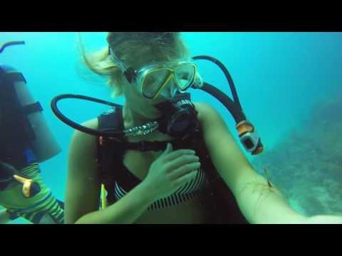 Danielle's Diving Adventures