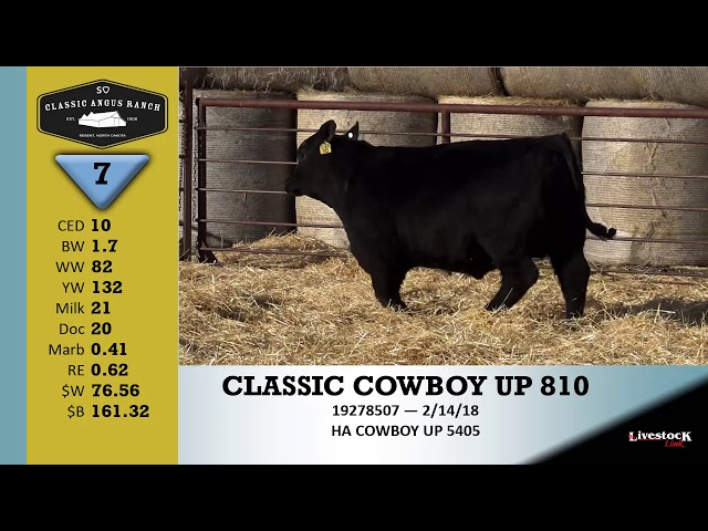 Classic Angus Ranch Lot 7
