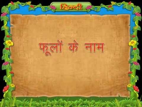 Flowers Name In Hindi For Class 3 Kids Youtube