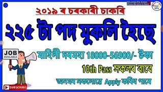 Latest Central Government Job 2019 // NYKS Total 225 Post - Education For Assam