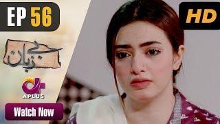 Pakistani Drama  Bezuban  Episode 56  Aplus Dramas  Usama Khan Nawal Saeed Junaid Mahlaqa