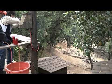 Joe Mantegna Shooting Sporting Clays at 2011 Hollywood Celebrity Sporting Clays Invitational