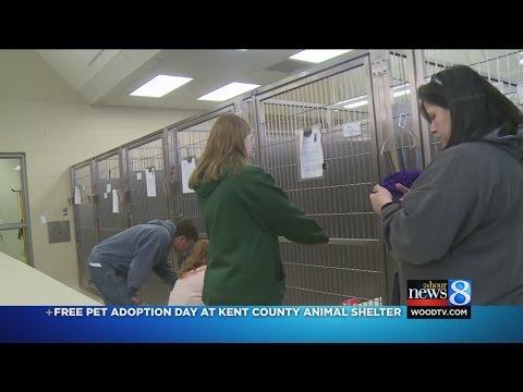 Free pet adoption day at Kent Co. Animal Shelter