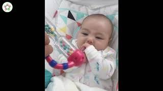Đồ chơi cho bé sơ sinh 2 tháng tuổi   Brain Builder
