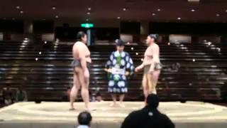大畑 勝ち 平成27年大相撲五月場所 2015-05-13