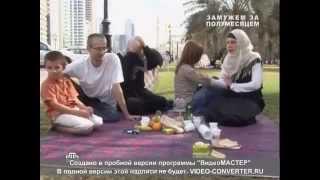многоженство в РФ, русские девушки,  3-4 жены