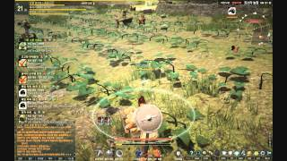 Black Desert Online Kr Cbt2: Mini-game Quest - Pushing Wheelbarrow