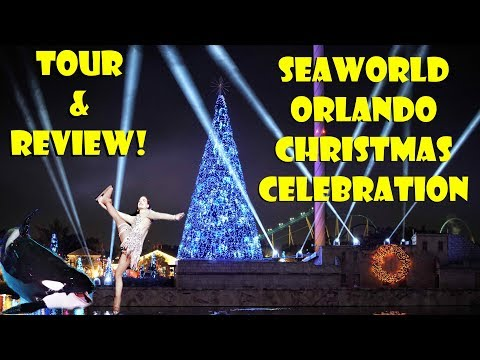 SeaWorld Orlando Christmas Celebration Tour & Review 2017  Lights, Skating, Whales, Coasters & More!