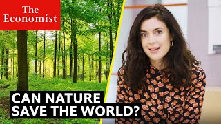 Climate Change: can nature repair the planet? | The Economist