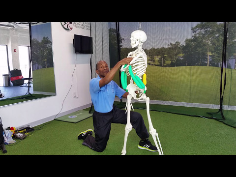 Golf Low Back Pain Must See Exercises and Stretches Part 3