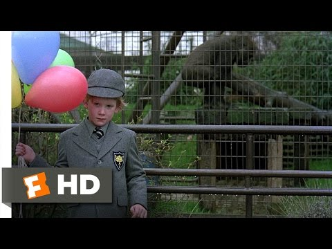 An American Werewolf in London (7/10) Movie CLIP - Naked at the Zoo (1981) HD