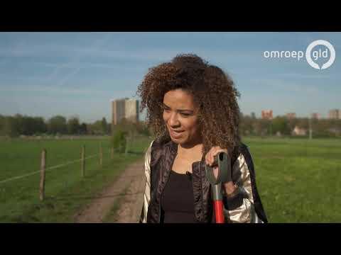Van Gelder VIP Vervoer 28 april 2018 - met RTL weervrouw Amara Onwuka