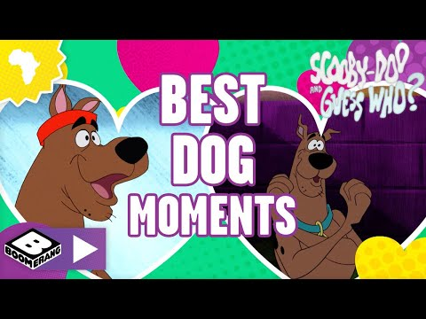 Tom & Jerry   Tom og Jerry leger apport   Boomerang Danmark from YouTube · Duration:  2 minutes 55 seconds