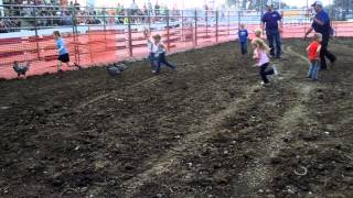 Repeat youtube video Chicken Scramble - 2014 Auglaize County Fair