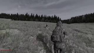 DayZ SA 0.61 - Survivor StoryZ #1 - Wölfe sind auch nur große Hunde