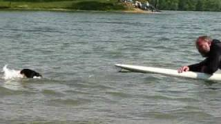 the surfer Thumbnail