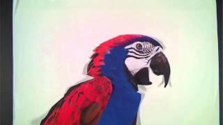 Cassius - 1999 remix parrot intro
