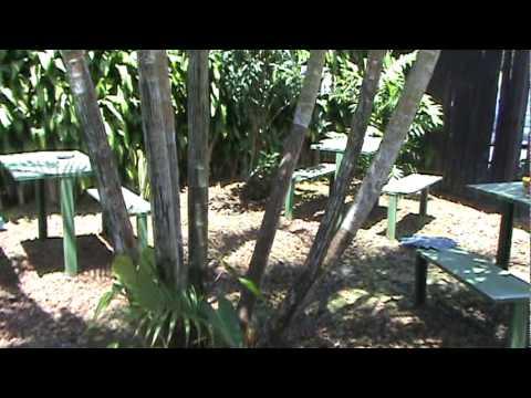 Costa Rica- Day Care Centre