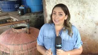 Produtores de cachaça artesanal celebram o dia nacional da bebida
