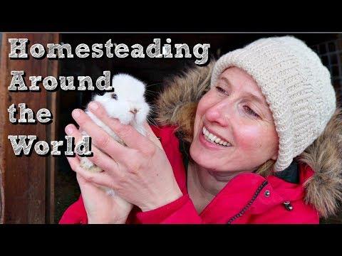 Our Homestead World | British Columbia, Canada! | Collaboration