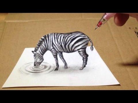 trick-art,-zebra-3d-drawing