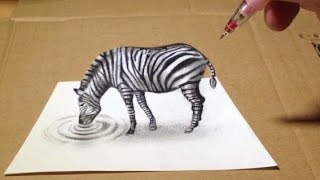Trick Art, Zebra 3D Drawing