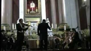Vivaldi /Primavera III/Allegro (Danza pastorale)/Alf