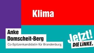 BTW21: Anke Domscheit-Berg zu Klimapolitik im Wahlprogramm DIE LINKE
