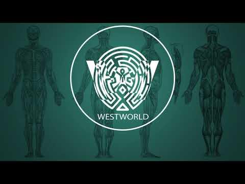 Ramin Djawadi - C.R.E.A.M. (Westworld...
