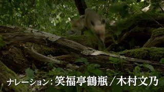 日本でも大ヒットを記録した『オーシャンズ』(09)のジャック・ペラン×...