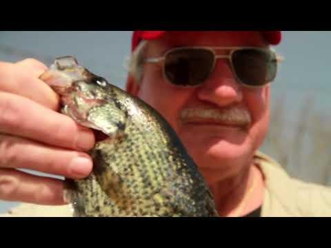 Freshwater Filet Mignon - Louisiana - Sportsman TV