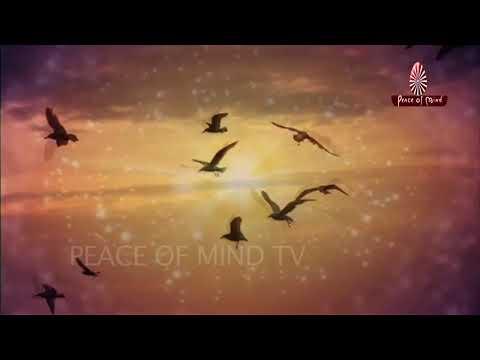 Zindagi Mein Lakhon Chamatkar Kiyein Hain | Song | Brahma Kumaris | Peace of Mind TV