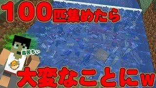 【カズクラ】魚100匹集めたら大変なことになったwマイクラ実況 PART305 thumbnail