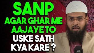 Sanp - Snake Agar Ghar Me Aajaye To Uske Sath Kya Karna Chahiye By Adv. Faiz Syed