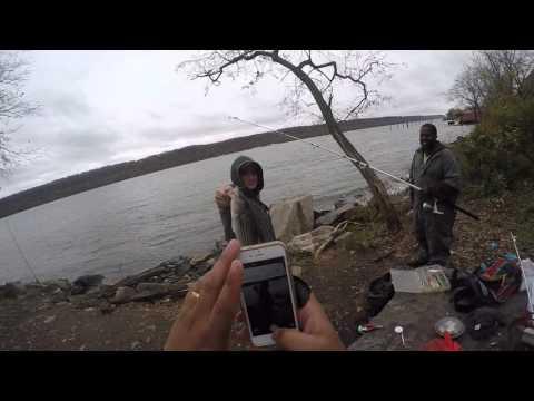 Striped Bass Fishing Hudson River